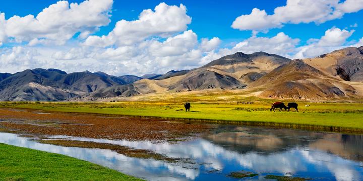 Tibet, Cina
